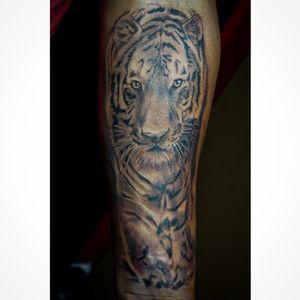 Tiger Black-N-Grey piece