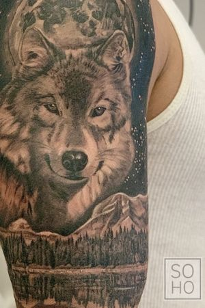 Detail shot of a wolf