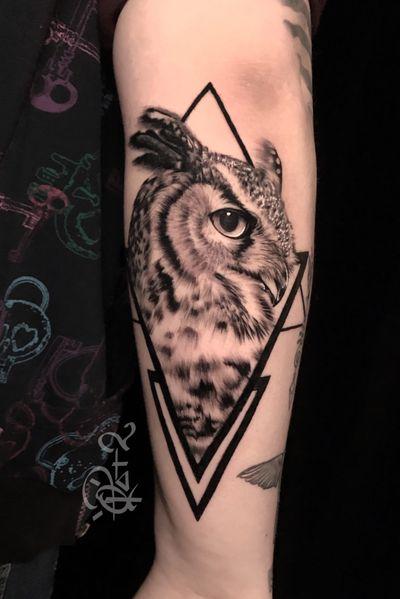 #owl #blackandgrey #qtat2 #qtats