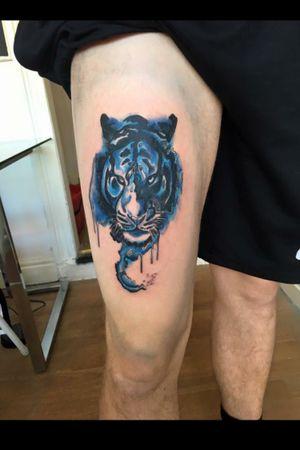 #bluetiger #tiger