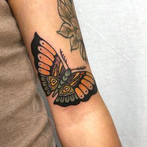 #moth #butterfly