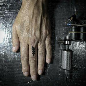 Hoja de Olivo en el dedo
