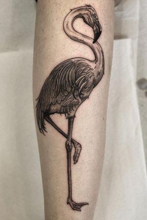 Flamingo Line work #tattoo #tattooideas #tattoodesign #tattooing #tattooart #skinart #inkedmag #tattoomagazine #la #california #tattooworld #lettering #chicano #berlin #berlintattoo #blackandgrey #blackandwhite #newtattoo #dailywork #letteringtattoo #cursive #letteringsoul #charlottenburg #kreuzburg #타투 #블랙엔그레이 #베를린타투 #레터링 #치카노레터링 #freehand