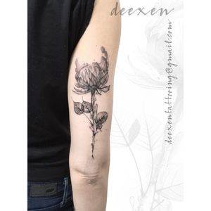 In the Dark ➡️Contact: deexentattooing@gmail.com ✴️Merci Maja! . . . #tatouages #flowertattoodesign #tatouagefemme #peonytattoo #tatouagefrance #greytattoo #peonytattoos #shadowtattoo #blackandwhitetattoos #tatouagefleur #deexen #flowertattoos #tatouageparis #tatouagebras #blackandwhitetattoo #flowertattoodesigns