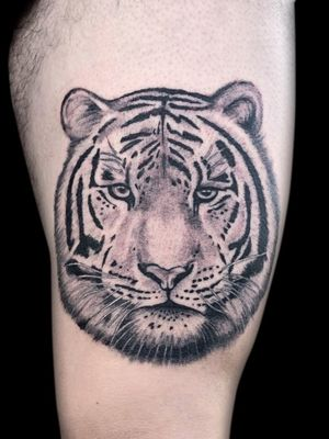 #blackandgrey #realism #tiger