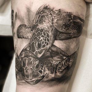 Black & grey Turtles #tattoo #tattooideas #tattoodesign #tattooing #tattooart #skinart #inkedmag #tattoomagazine #la #california #tattooworld #lettering #chicano #berlin #berlintattoo #blackandgrey #blackandwhite #newtattoo #dailywork #letteringtattoo #cursive #letteringsoul #charlottenburg #kreuzburg #타투 #블랙엔그레이 #베를린타투 #레터링 #치카노레터링 #freehand