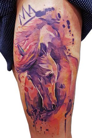 Watercolor horse king. Book me NYC March x LA April