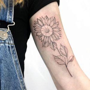 #VANCOUVER #vancouvertattooartists #vancity #vancouvertattoo #vancouvertattooartist #sunflower #sunflowertattoo #flower #flowertattoo #simpletattoo #simple #fineline #finelinetattoo #fineart