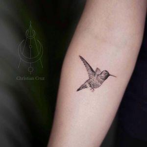 Hummingbird 🌸🌺. Check my IG @christiancruztats