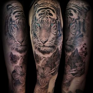 Siberian tiger with mountain landscape. Upper arm black and grey
