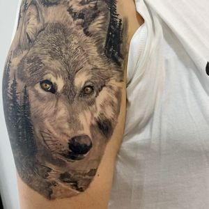 Healed wolf and nature
