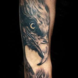 #eagle #eagletattoo #tattooart #tattoo2me