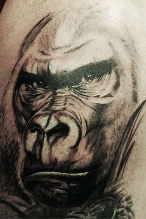 Black &grey silverback #silverback #gorilla #tattoo #monkey #tattoos #realism #black #grey #nature #wild #wildlife #art #artist #erkan # nehir
