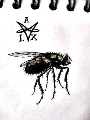 """Fly"" #flytattoo #owndesign #lamosca"