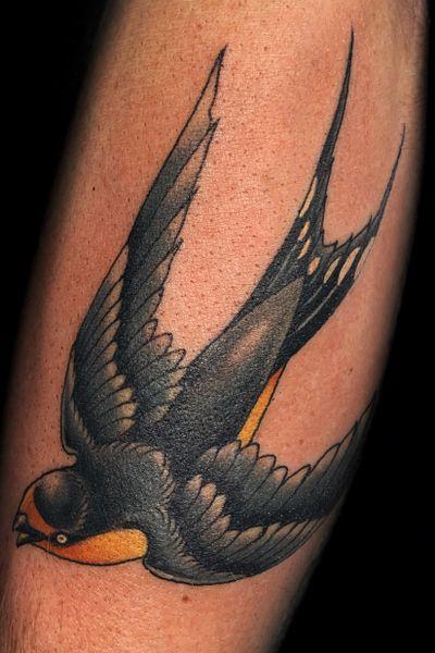 #swallow #sparrow #barnswallow