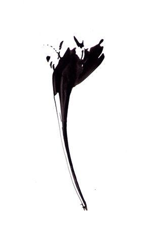 #abstractflower #andresamarski #flowerdesign #watercolor #abstract