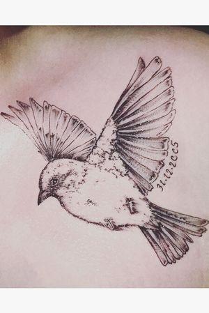 #bird #oiseau #me #moi