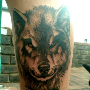 #wolf #portrait #calf #blackwork