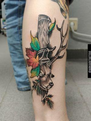 Deer knife autumn