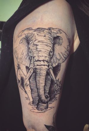 Illustrative elephant drawn up for a client with a few personal touches added in there