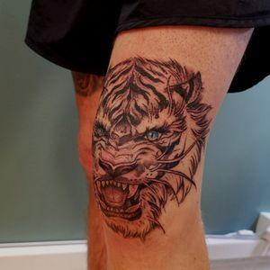 Tiger knee by Jones #tiger #tigerking #kneetattoo #tattoodo #tattooofday