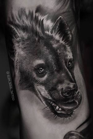 #hyena #elensoul #blackandgrey