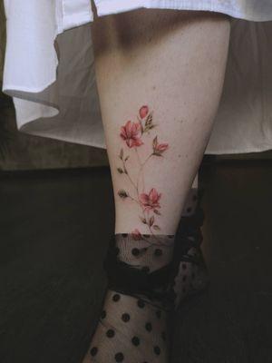 🌷 . . . #smalltattoo #customtattoo #inkmaster #cartoontattoo #tattoomachinebuilder #sullenart #theartisthemotive #tattoomachinecoil #miamitattoos #highcontrast #hbouthere #brusselstattoo #tattooleg #weekly_feature #radiantcolorsink #tatooink #dundeetattoo #michigantattooers #surf #tenerifetattoo #tattooisartmag #chrysanthemumtattoo #tattoedboys #branchtattoo #animal #tatau #jaguarwarrior #cat #tatuadoresvenezolanos #skulls