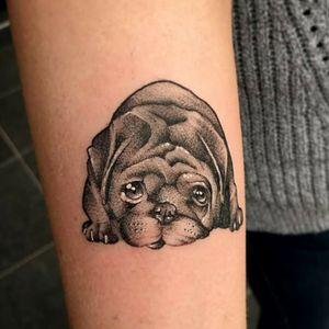 Little #whipshaded doggo I got to do #blackandgreytattoos #blackandgreytattoo #whipshaded #whip #whipshading #whipshade #PugLife #PugTattoo #pug #dogtattoo #doggy #dog
