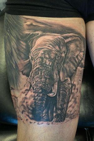 Elephant to go with an African leg sleeve