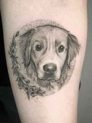 Golden Retriever boy💛 #portrait #goldenretriever #blackandgreytattoo #blackwork #puppy #dogportrait