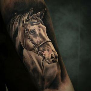 Artist insta: @jeremybertintattoo #tatouage #tatouagemagazine #tattoo #tattoofrance #ink #inked #skin #skinart #art #artist #draw #drawing #realisme #tatouagerealiste #realism #picture #photography #pic #photooftheday #auvetementincarne #jeremybertin #jeremybertintattoo