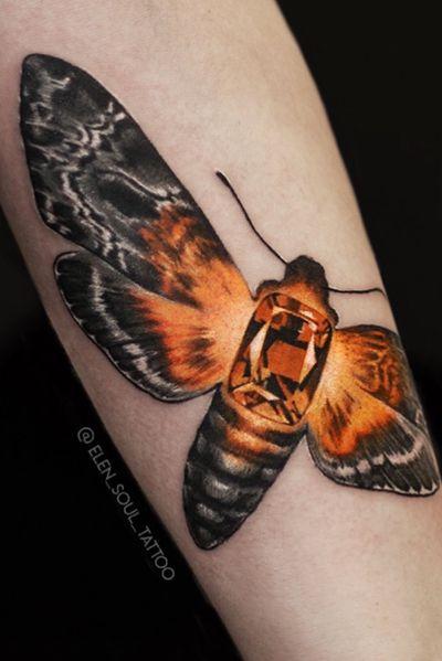 #elensoul #moth #briliant