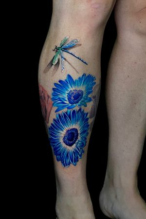 Dragon fly and Gerber daisies