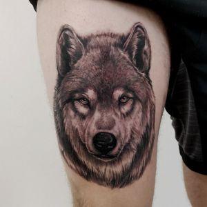 Wolfpack #wolf #wolftatoo