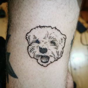 Dog portrait —- also on ig as uglyblacksheep