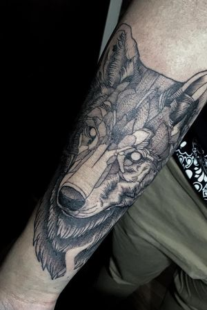 Lobo / Wolf