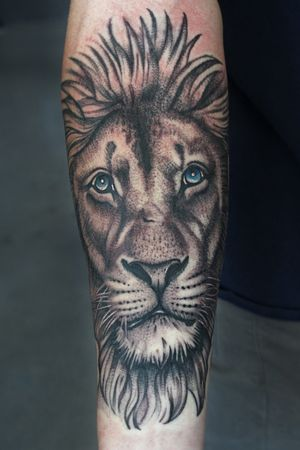 Realistic lion with blue eyes
