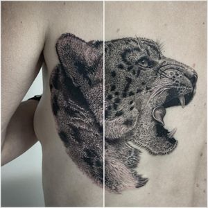 #tattoooftheday #tattoo #tatouage #snowleopard #snowleopardtattoo #pantheredesneiges #animals #animaltattoo #realistictattoo #realisticink #realism #blackandgreytattoo #blackandwhitetattoo #lausanne #lausannetattoo #tattoolausanne #fann_ink