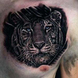 tiger chest piece