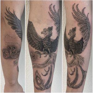 #tattoo #tatouage #tattoooftheday #phoenix #phoenixtattoo #bird #birdtattoo #dot #dotwork #dotworktattoo #dotworkers #blackandgreytattoo #realistictattoo #realisticink #realism #lausanne #lausannetattoo #tattoolausanne #fann_ink