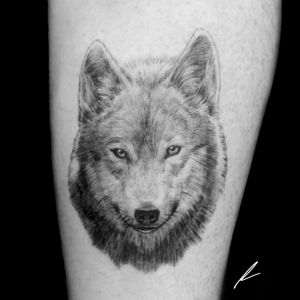 Instagram: @rusty_hst Small realistic wolf done on forearm.  #wild #wolf #realism #blackandgrey