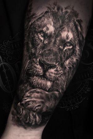 Lion on forearm #liontattoo #lion #liontattoos #torontotattoo #torontotattoos