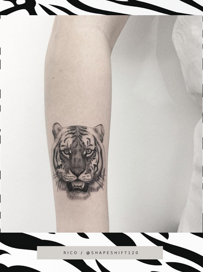 Go Get Em Tiger . . . #beautiful #bigcat #tattoo by @shapeshift102 for the lovely @sister_sphynx 🐯 . . . For bookings and queries email shapeshift102@gmail.com or DM Rico directly. . . . @flashheal @creamtattoosupplyza @tattooinc.co.za @ecotatpro @electrumstencilproducts @dynamiccolor @blackclaw @south_african_tattoo_society . . . #tattoo #tattoos #kakluckytattoos #mood #socialdistancing2020 #lekker #capetowntattoos #mood #love #staysafe #art #artists #wecandothis #belekker #safetyfirst #covid19prepared #goodvibes #keepsafe #art #artist #beauty #bigmood #instagood #instadaily #fineline #newarrivals #capetowntattoos #cattattoo #shapeshift102 #finelinetattoo