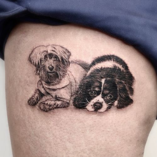 Tiny Dog Portraits 🐶 #micro #fineline #dogportrait #smalltattoo #dogs #blackandgrey #realistic