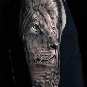 lion piexce