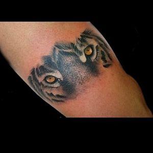 Otros ojitos de hoy.. 🥰 #tattoo #inked #ink #tiger #tigereyes #tigre #tigretattoo #blackandgrey #blackandgreytattoo #luchotattoo #luchotattooer #pergamino