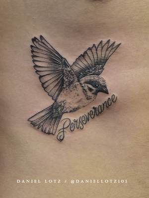 Feathered Friend . . . #sweet little #birdtattoo for Kian by @daniellotz101 . . . @flashheal @creamtattoosupplyza @tattooinc.co.za @ecotatpro @electrumstencilproducts @dynamiccolor @blackclaw @south_african_tattoo_society . . . FOR BOOKINGS : Email: info@kakluckytattoos.com Call: 021 422-2963 . . . #tattoo #tattoos #kakluckytattoos #mood #lekker #capetowntattoos #mood #love #staysafe #art #artists #wecandothis #belekker #safetyfirst #covid19prepared #goodvibes #keepsafe #art #artist #beauty #bigmood #instagood #instadaily #nature #picoftheday #photography #capetown #420 #fresh