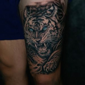Finished product of this tiger after 2 sessions. This was this kids first tattoo. If you are going to do anything do it right!