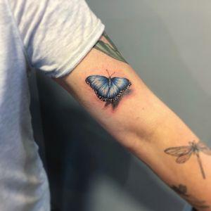 Pretty butterfly 🦋