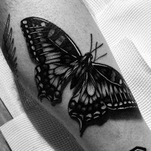 #butterfly #realism #balckandgray
